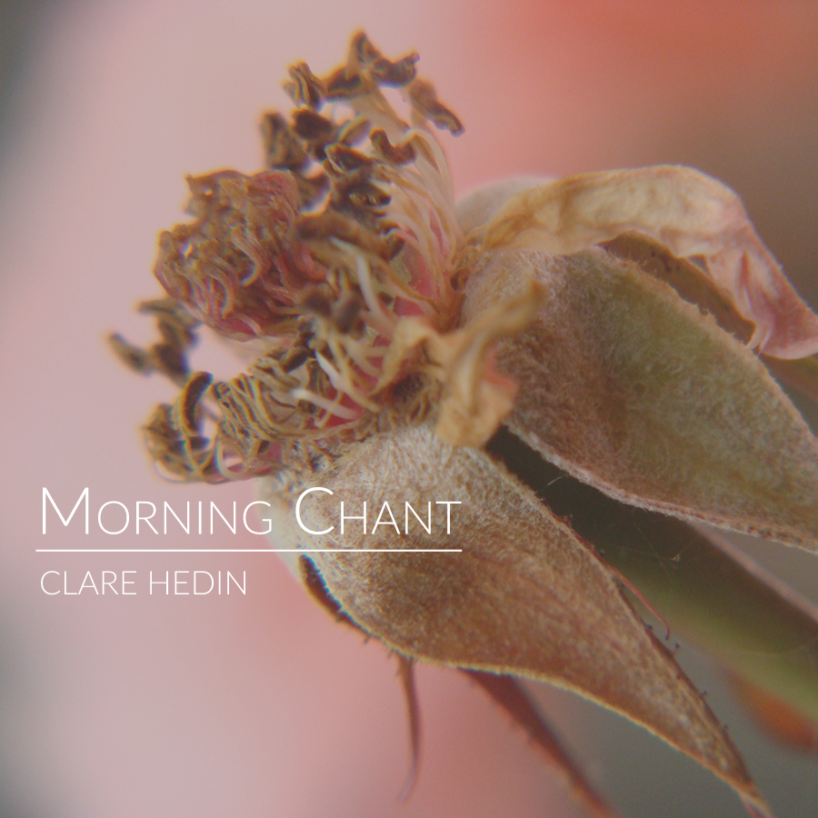 Clare Hedin - Morning Chant